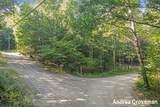 VL Huron Trail - Photo 8