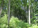 Wildwood Trail - Photo 10