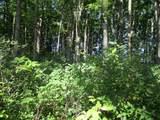 Wildwood Trail - Photo 11