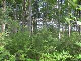 Wildwood Trail - Photo 12