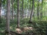 Wildwood Trail - Photo 13