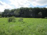 Wildwood Trail - Photo 6