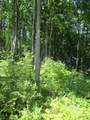Wildwood Trail - Photo 9