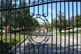 47490 Bellagio Drive - Photo 9