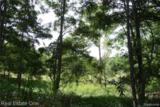 0000 Indian Camp Trail - Photo 1