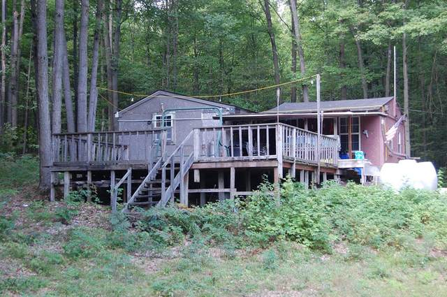 00 Arnold Road, Lake City, MI 49651 (#68020046981) :: The Alex Nugent Team   Real Estate One
