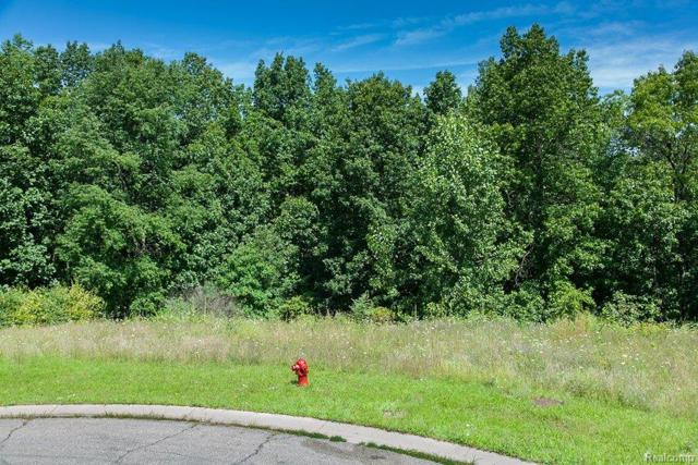 9045 Deerwood Road, Independence Twp, MI 48346 (MLS #213079041) :: The Toth Team