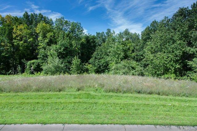 8947 Deerwood Road, Independence Twp, MI 48346 (MLS #213079047) :: The Toth Team