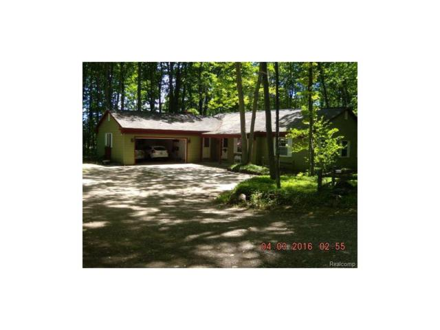 8839 Murray, Charlevoix, MI 49720 (#216056758) :: The Buckley Jolley Real Estate Team