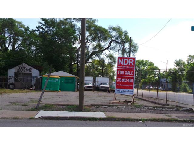 2444 Mount Elliott Street, Detroit, MI 48207 (#216063517) :: The Buckley Jolley Real Estate Team