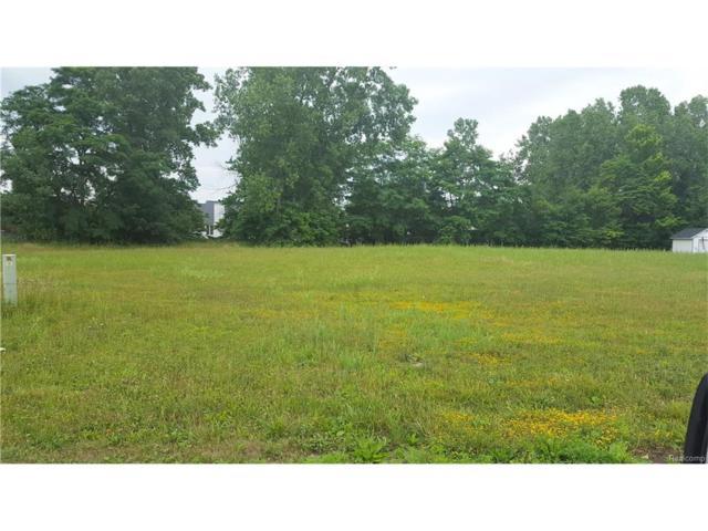 1994 Woodland Estates, Saint Clair, MI 48079 (MLS #216069197) :: The Toth Team
