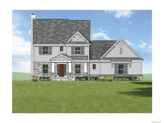 11768 Scenic Valley Drive, Springfield Twp, MI 48350 (MLS #216080813) :: The Toth Team