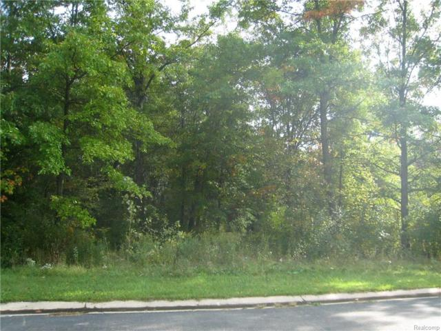 Lot 12 Courtney Court, Hartland Twp, MI 48353 (MLS #216086064) :: The Toth Team