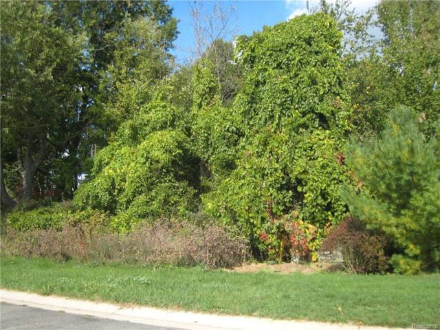 Lot 26 Courtney Court, Hartland Twp, MI 48353 (MLS #216086084) :: The Toth Team