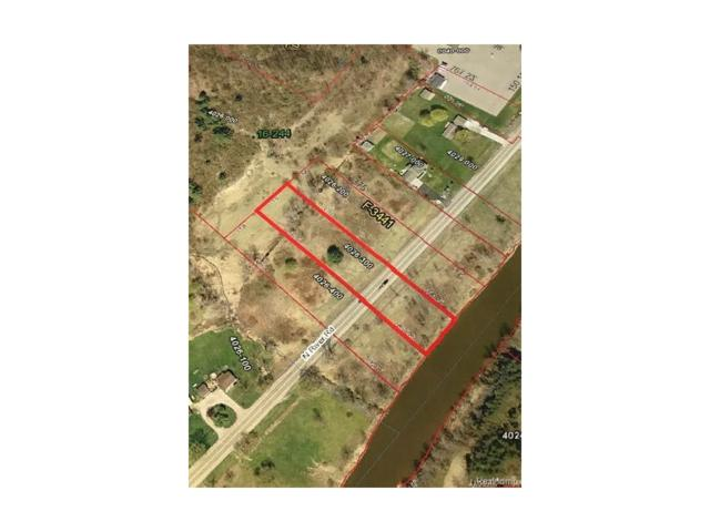 0 N River Road, Clyde Twp, MI 48049 (#217001521) :: The Buckley Jolley Real Estate Team