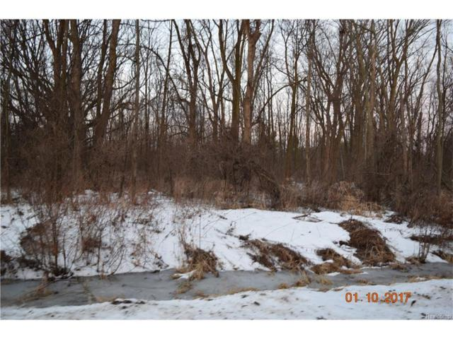 20 Vacant lots Concord, Cranbrook, Tulane, Marlette, MI 48453 (#217002876) :: The Buckley Jolley Real Estate Team
