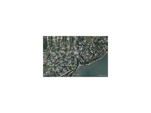 lot 571-572 Shady Lane, Frenchtown Twp, MI 48166 (#217005812) :: The Buckley Jolley Real Estate Team