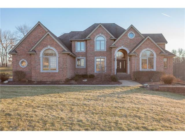 3297 Canyon Oaks Trail, Milford Twp, MI 48380 (#217014342) :: Simon Thomas Homes