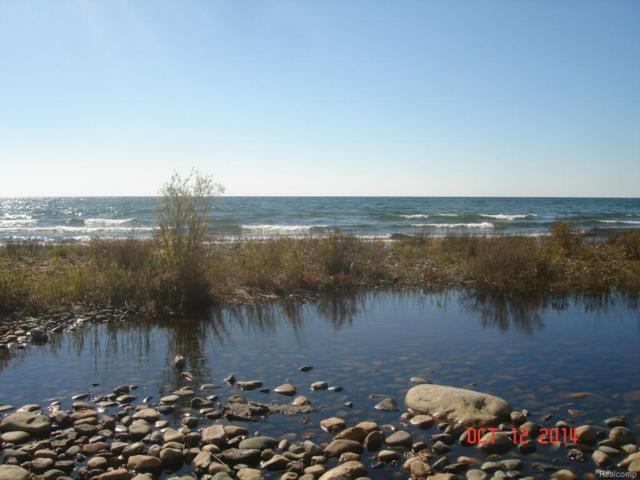 0000 E Bass Cove Rd Island, Drummond Twp, MI 49726 (MLS #217020337) :: The Toth Team