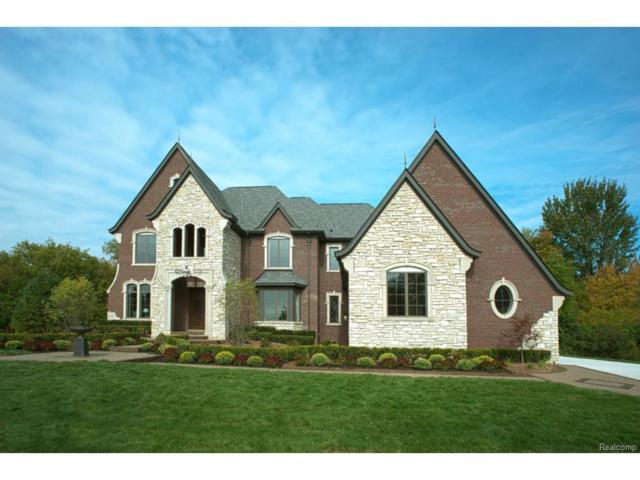 1729 Heron Ridge, Bloomfield Twp, MI 48302 (#217021326) :: The Buckley Jolley Real Estate Team