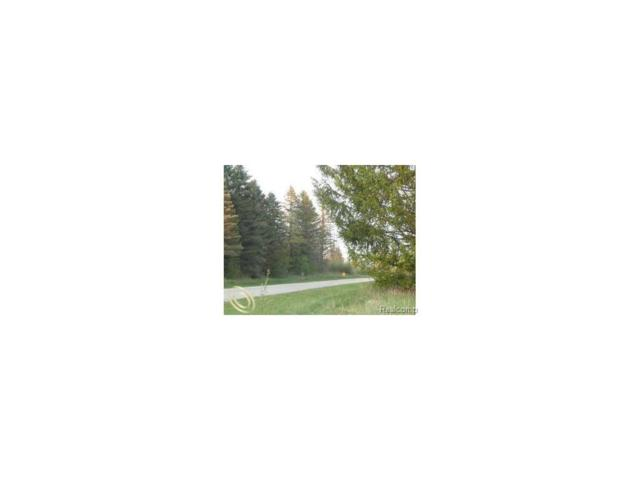 LOT 7 Oak Shore Drive, Green Oak Twp, MI 48178 (#217023565) :: The Buckley Jolley Real Estate Team