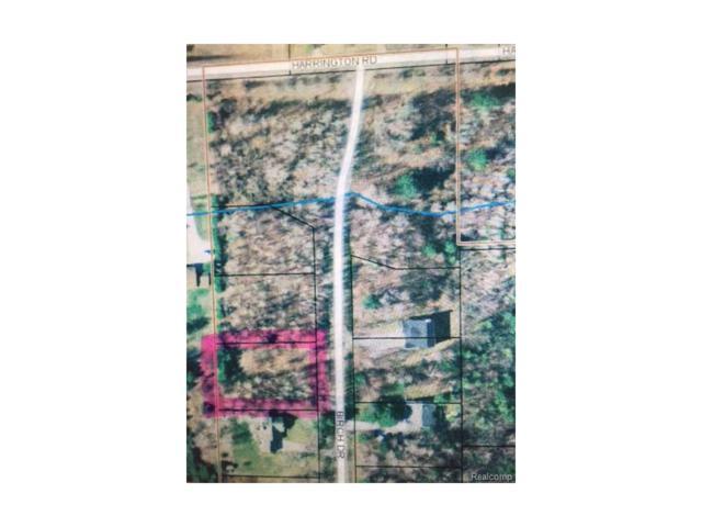 V/L Birch, Lexington Vlg, MI 48450 (#217024867) :: RE/MAX Classic
