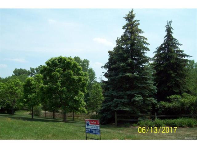 32511 Sanctuary Court, Farmington Hills, MI 48336 (#217028533) :: RE/MAX Classic