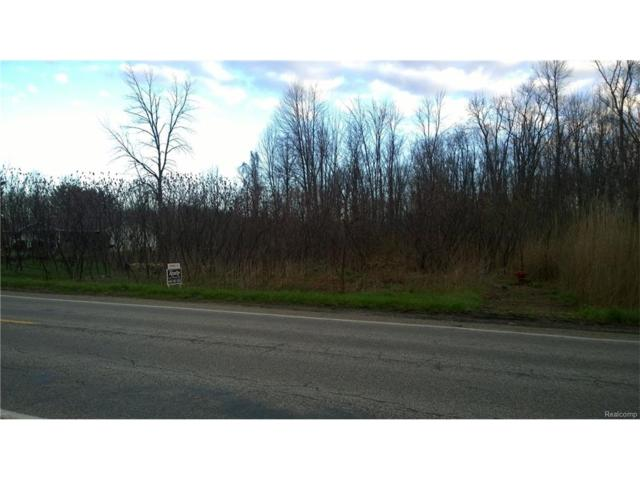 TBD Metcalf Road, Burtchville Twp, MI 48059 (#217032322) :: Metro Detroit Realty Team | eXp Realty LLC
