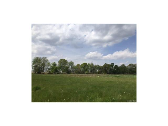 0 Adelines (Lot 19) Way, Iosco Twp, MI 48836 (#217036320) :: The Buckley Jolley Real Estate Team