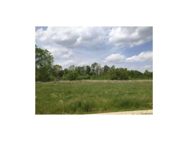 0 Adelines (Lot 22) Way, Iosco Twp, MI 48836 (#217036331) :: The Buckley Jolley Real Estate Team