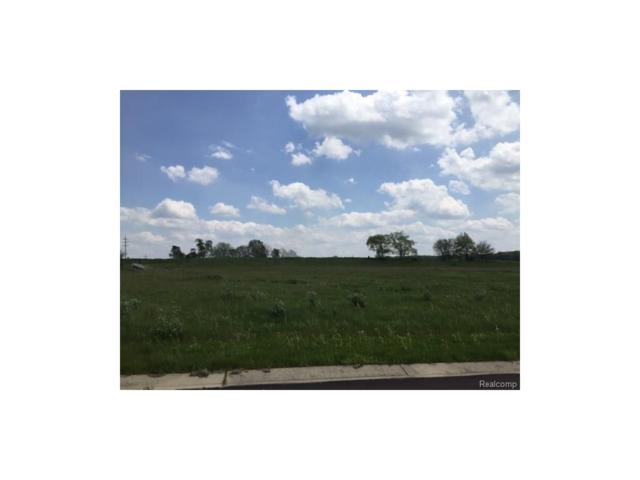 0 Adelines (Lot 5) Way, Iosco Twp, MI 48836 (#217036349) :: The Buckley Jolley Real Estate Team