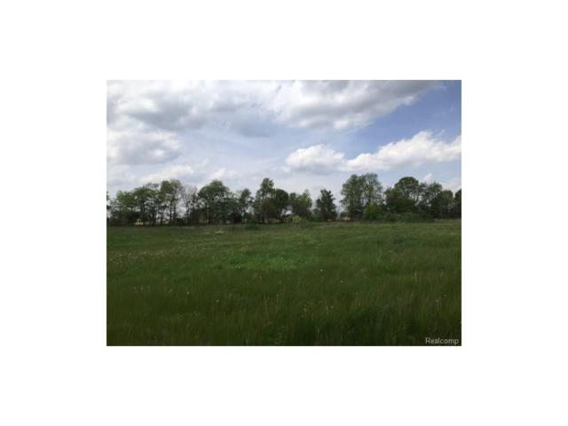 0 Adelines (Lot 17) Way, Iosco Twp, MI 48836 (#217036353) :: The Buckley Jolley Real Estate Team