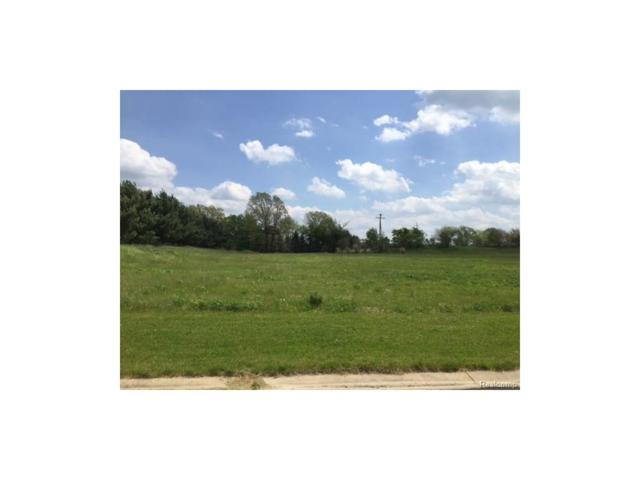 0 Adelines (Lot 1) Way, Iosco Twp, MI 48836 (#217036367) :: The Buckley Jolley Real Estate Team