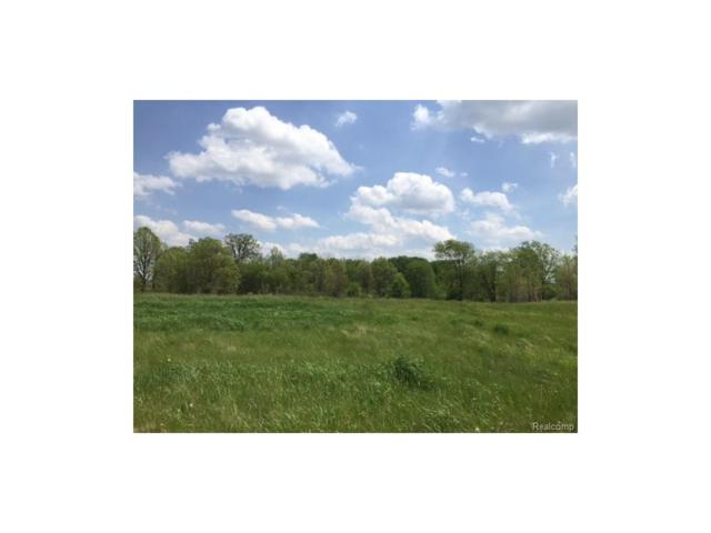 0 Adelines (Lot 12) Way, Iosco Twp, MI 48836 (#217036396) :: Novak & Associates