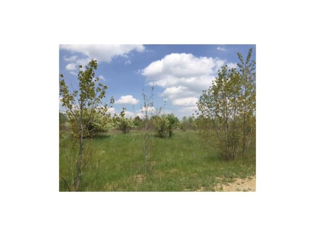 0 Eva (Lot 6) Lane, Conway Twp, MI 48836 (#217036403) :: The Buckley Jolley Real Estate Team
