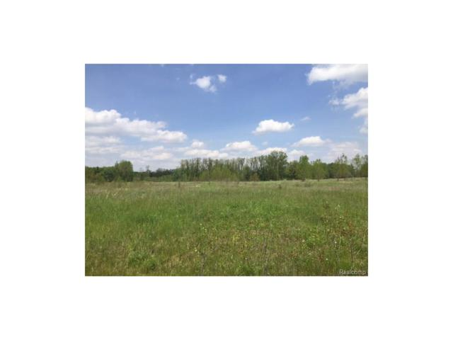 0 Eva (Lot 8) Lane, Conway Twp, MI 48836 (#217036493) :: The Buckley Jolley Real Estate Team