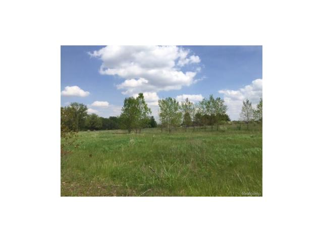 0 Eva (Lot 7) Lane, Conway Twp, MI 48836 (#217036499) :: The Buckley Jolley Real Estate Team