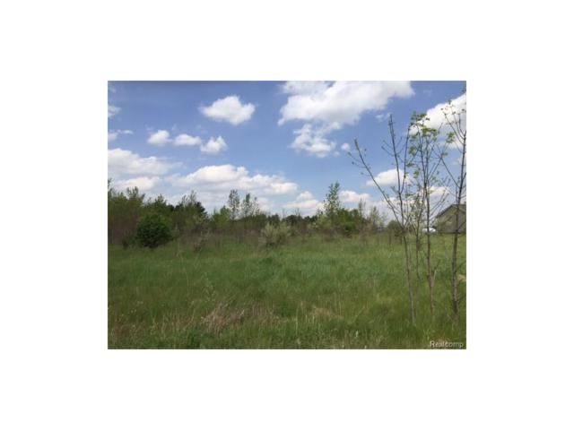 0 Eva (Lot 3) Lane, Conway Twp, MI 48836 (#217036501) :: The Buckley Jolley Real Estate Team