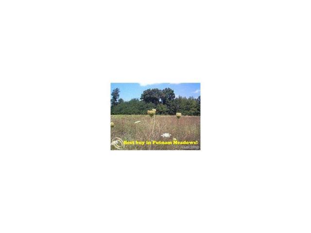 Lot 97 Emu Drive, Putnam Twp, MI 48169 (MLS #217041850) :: The Toth Team
