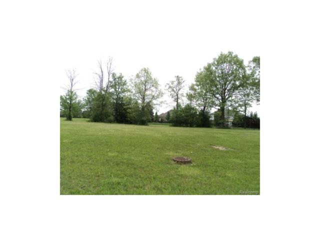 Lot 74 Irene Drive, Saint Clair Twp, MI 48079 (#217043120) :: RE/MAX Classic