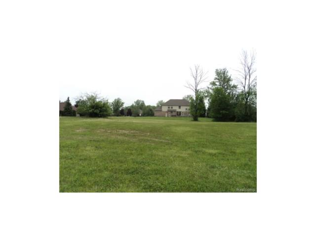 LOT 75 Irene Drive, Saint Clair Twp, MI 48079 (#217043128) :: RE/MAX Classic