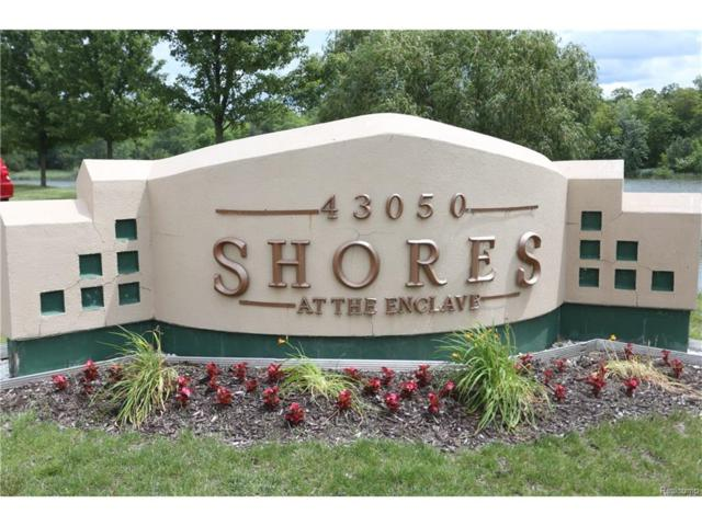 43050 12 OAKS CRESCENT Drive #80, Novi, MI 48377 (#217052347) :: Simon Thomas Homes