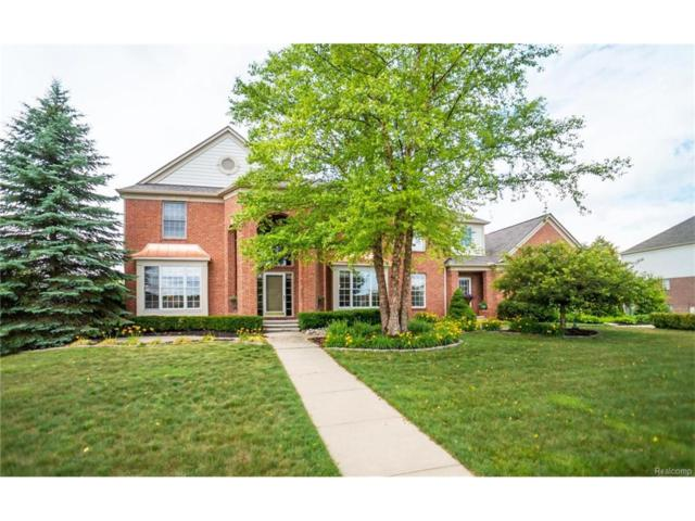 11337 Maple Valley Drive, Plymouth Twp, MI 48170 (#217054258) :: RE/MAX Classic