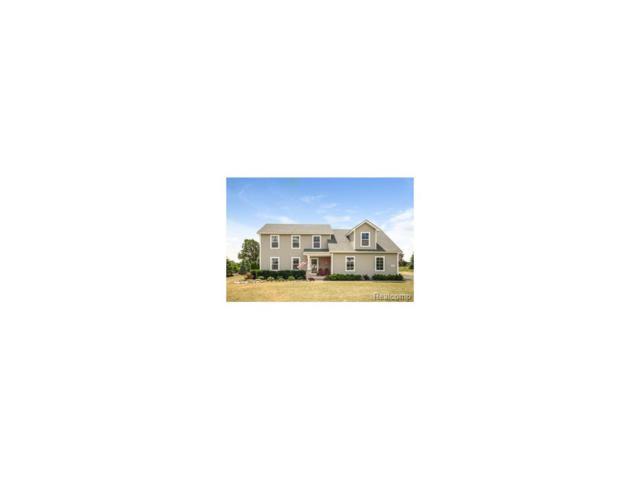 426 Meadowind Court, Putnam Twp, MI 48169 (#217054433) :: RE/MAX Vision