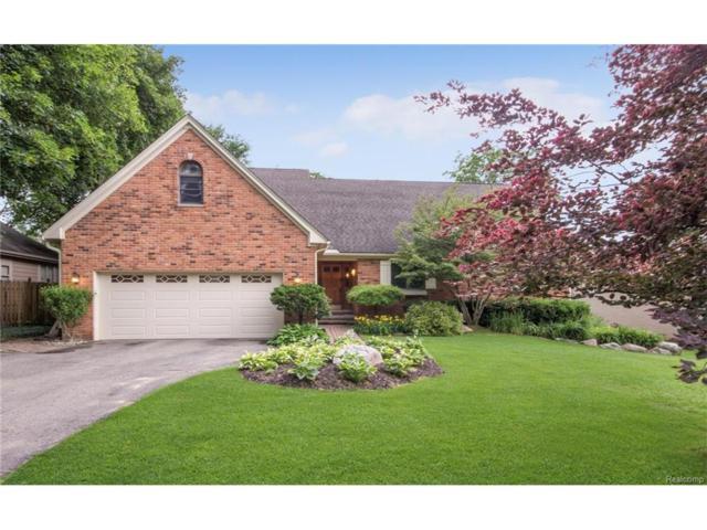 5817 Belgrave Avenue, West Bloomfield Twp, MI 48323 (#217054573) :: Simon Thomas Homes