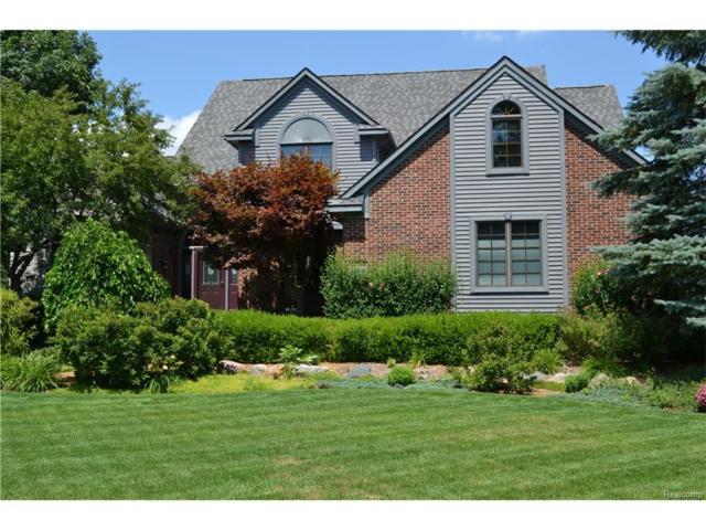 3207 Lakewood Shores, Genoa Twp, MI 48843 (#217059638) :: Simon Thomas Homes