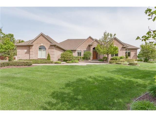 13095 Renaissance Drive, Shelby Twp, MI 48315 (#217063043) :: Simon Thomas Homes