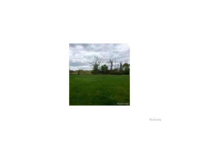 358 Wildflower Lane, Lapeer, MI 48446 (#217065534) :: The Buckley Jolley Real Estate Team