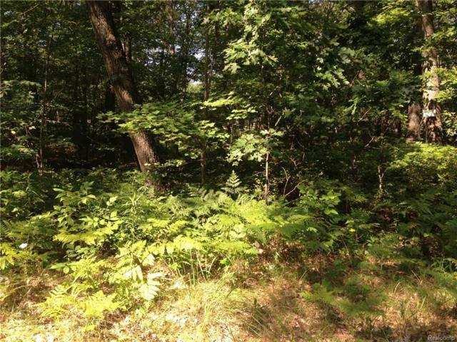 Lot 5 & 6 Ridge Lane, Lake Twp, MI 48467 (MLS #217067347) :: The Toth Team