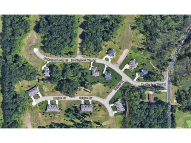 0 Rockingham Way, Jackson, MI 49203 (#217068819) :: The Buckley Jolley Real Estate Team